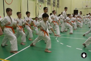 uchebnyie-zanyatiya-po-karate-114