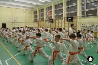 uchebnyie-zanyatiya-po-karate-116