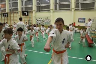 uchebnyie-zanyatiya-po-karate-117