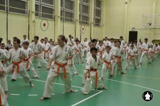 uchebnyie-zanyatiya-po-karate-118