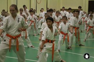 uchebnyie-zanyatiya-po-karate-119