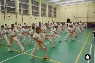 uchebnyie-zanyatiya-po-karate-120