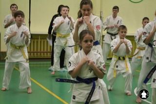 uchebnyie-zanyatiya-po-karate-131