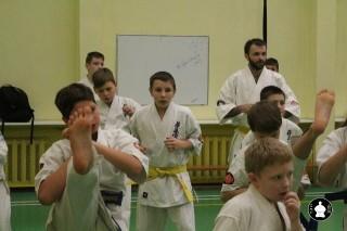 uchebnyie-zanyatiya-po-karate-135