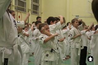 uchebnyie-zanyatiya-po-karate-24