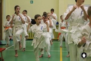 uchebnyie-zanyatiya-po-karate-51