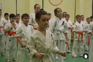 uchebnyie-zanyatiya-po-karate-68