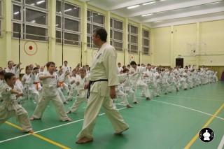 uchebnyie-zanyatiya-po-karate-80