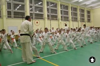uchebnyie-zanyatiya-po-karate-81