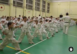 uchebnyie-zanyatiya-po-karate-83