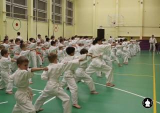 uchebnyie-zanyatiya-po-karate-84