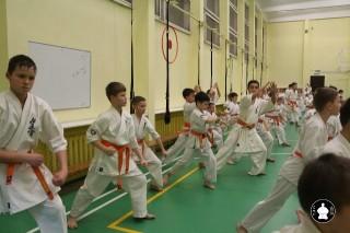 uchebnyie-zanyatiya-po-karate-85