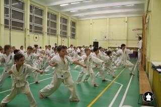 uchebnyie-zanyatiya-po-karate-91