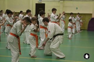 uchebnyie-zanyatiya-po-karate-99