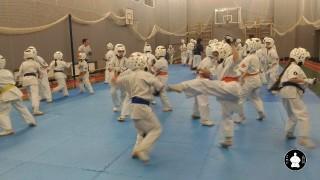 тренировки по кумитэ для детей (14)
