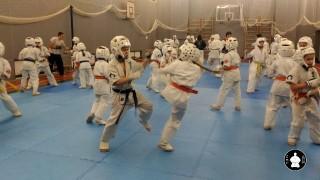 тренировки по кумитэ для детей (15)