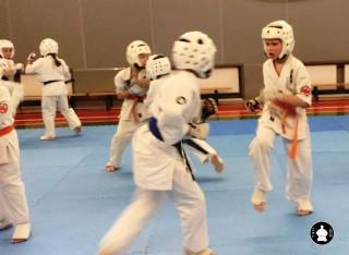 тренировки по кумитэ для детей (35)