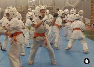 тренировки по кумитэ для детей (4)