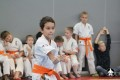 школа Киокушинкай СИН (88)