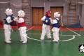 боевые искусства для детей (23)