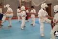 боевые искусства для детей (6)