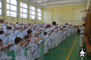 киокушинкай экзамены (1)