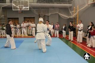 киокушинкай карате для детей (120)