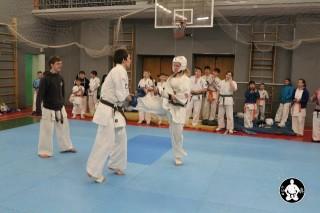 киокушинкай карате для детей (124)