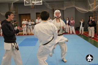 киокушинкай карате для детей (134)