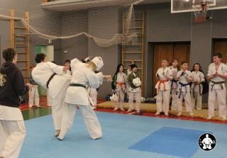 киокушинкай карате для детей (137)