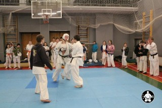 киокушинкай карате для детей (139)