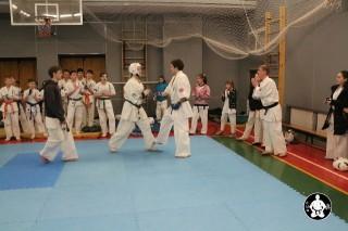 киокушинкай карате для детей (142)