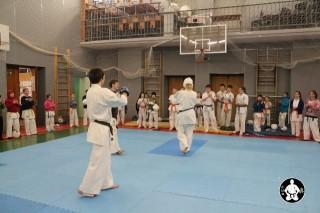 киокушинкай карате для детей (147)