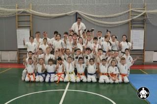 киокушинкай карате для детей (154)