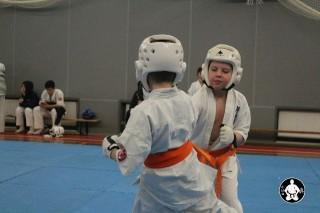 киокушинкай карате для детей (25)