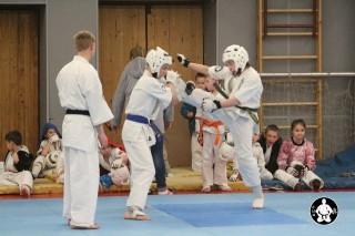 киокушинкай карате для детей (3)