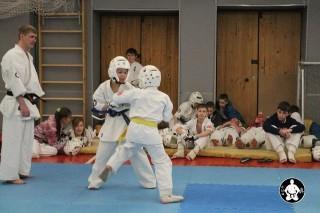 киокушинкай карате для детей (31)