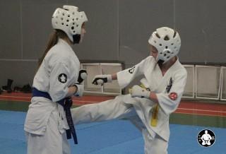киокушинкай карате для детей (48)