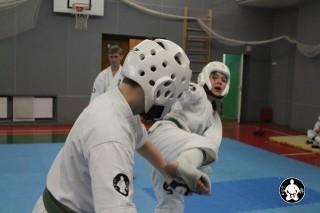 киокушинкай карате для детей (69)