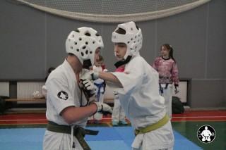 киокушинкай карате для детей (90)
