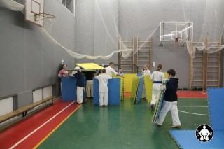 киокушинкай карате для детей (97)