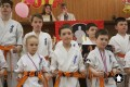 Клуб Кекусинкай карате СИН (114)