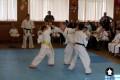 Клуб Кекусинкай карате СИН (13)