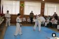 Клуб Кекусинкай карате СИН (23)