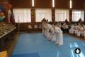 Клуб Кекусинкай карате СИН (7)
