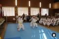 Клуб Кекусинкай карате СИН (8)