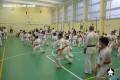 каратэ экзамены (102)