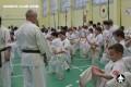 каратэ экзамены (67)