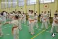 каратэ экзамены (88)