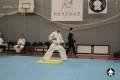 ката карате киокушинкай (36)
